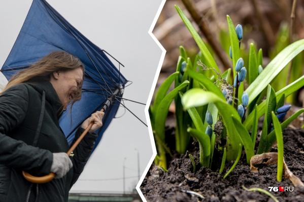 Весна наступит стремительно: с сегодняшнего дня погода будет резко меняться