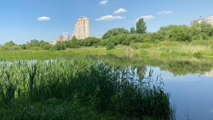 На очистку реки Миасс в Челябинске потратят почти вдвое больше, чем в прошлом году