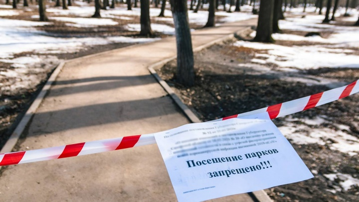 Электронные пропуска и блокпосты. Московские меры против коронавируса через пару недель могут прийти к нам