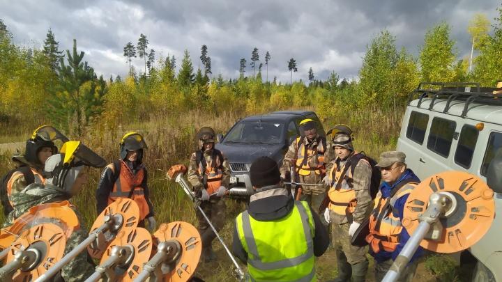Рубить, чтобы ухаживать: УЛК и Всемирный фонд дикой природы провели семинар для работников леса