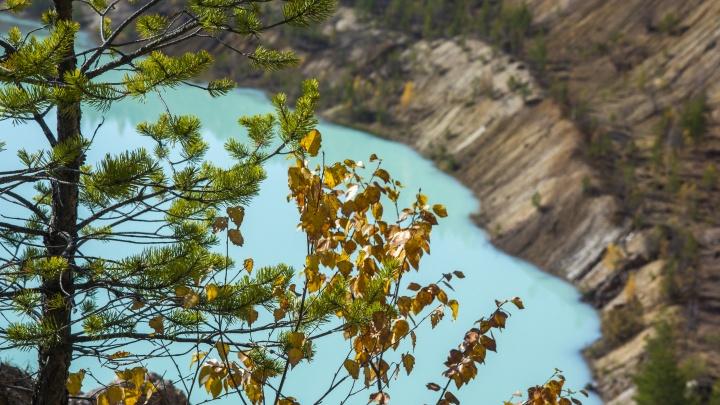 Последние краски осени: любуемся оттенками золотого в башкирской глубинке
