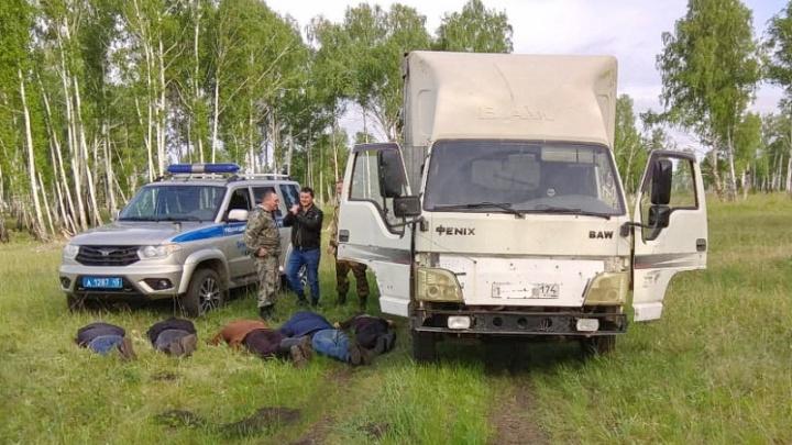 Нашли по следам животных: в Зауралье задержали группу скотокрадов из Челябинской области
