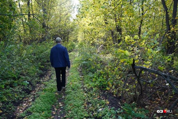 Прогулки по лесу могут обернуться штрафами