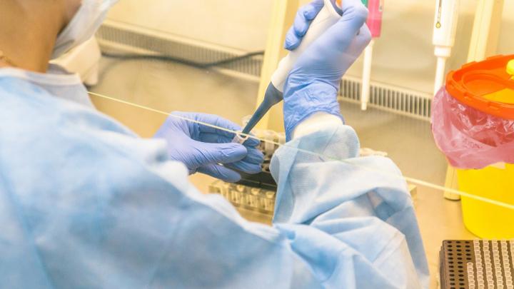 За сутки еще у 148 человек выявили коронавирус