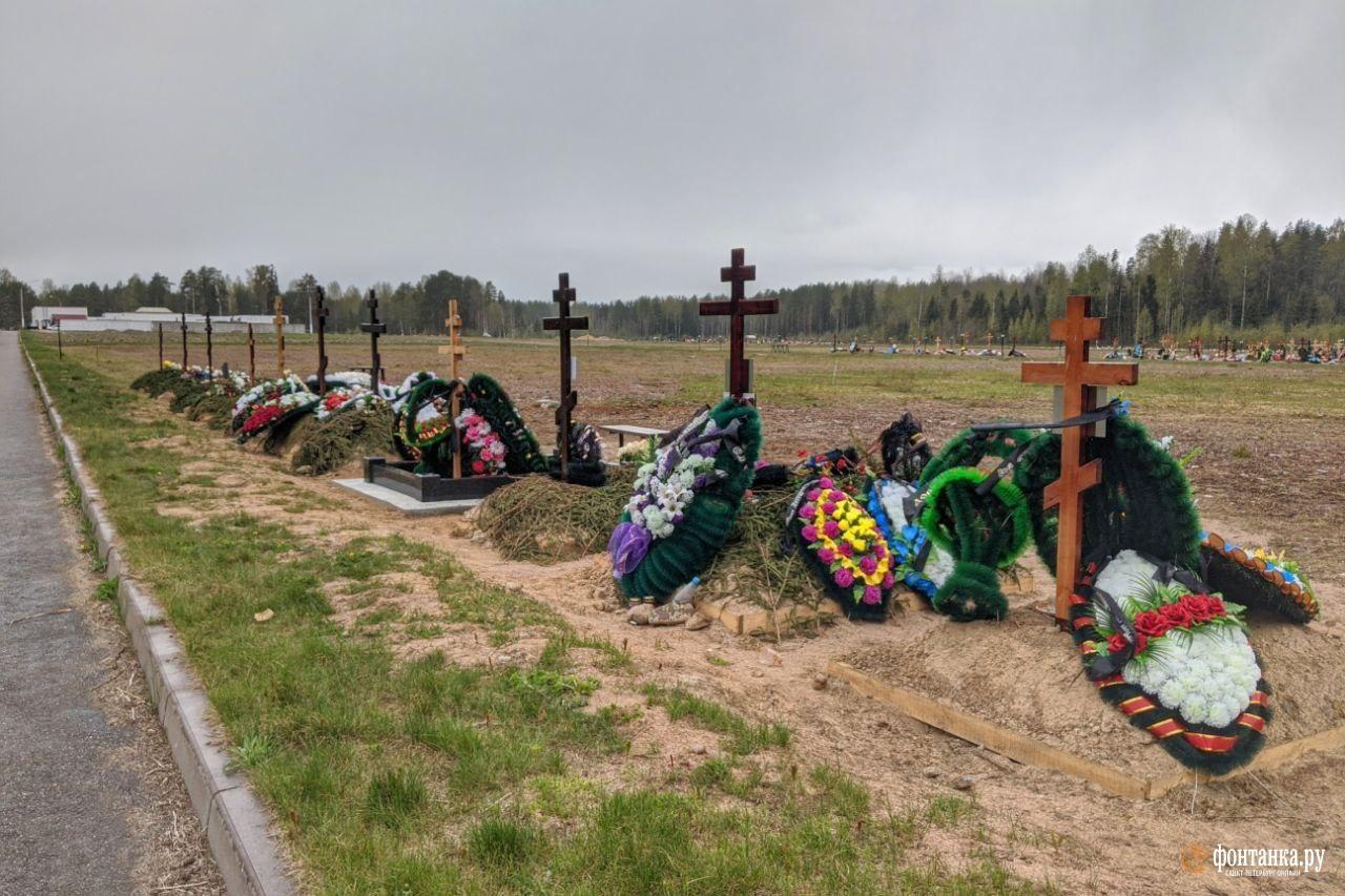 Кладбище «Илики», май 2020 года<br><br>автор фото Павел Каравашкин / «Фонтанка.ру»<br>