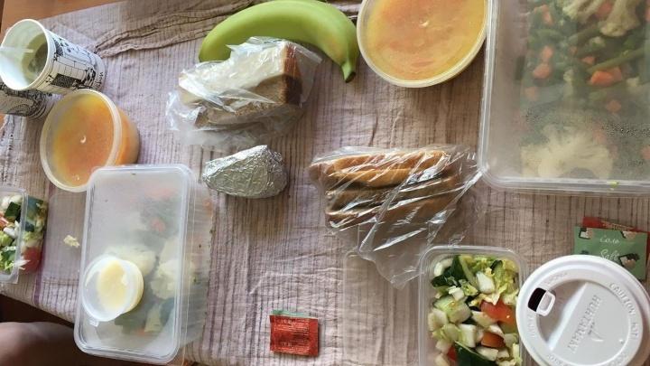 «Их кормят обычной едой»: в обсерваторе «AVS Отеля» на Уралмаше вегетарианцы вынуждены голодать