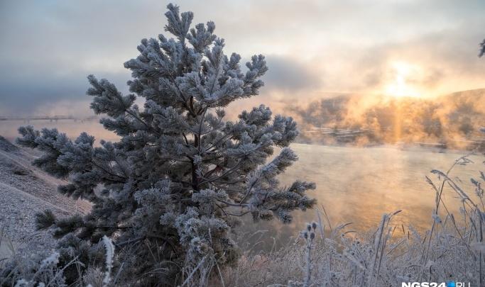 В Красноярске ожидаются теплые выходные