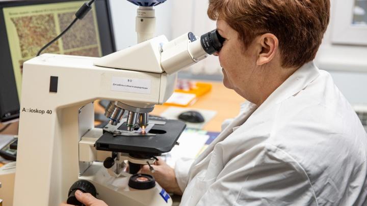Сибирские учёные придумали новый способ, как выявить у любого человека коронавирус (кровь сдавать не надо)