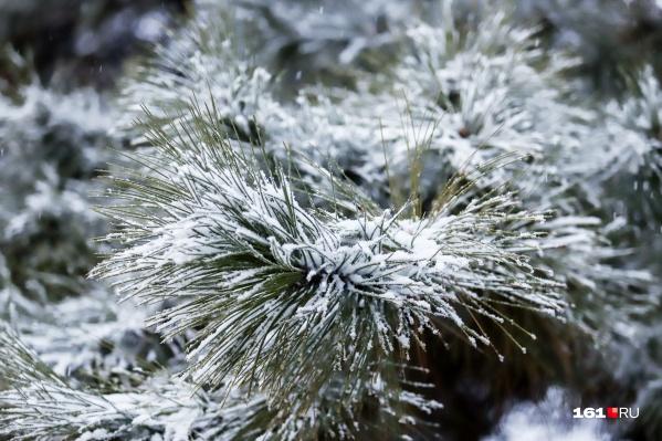 Снег в Ростовской области будет идти как минимум сутки