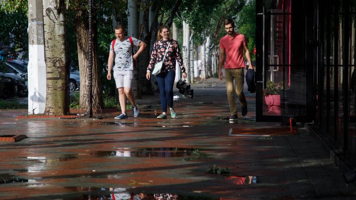 Северный ветер принесет похолодание в Волгоград. Вечером 19 августа прогремят грозы