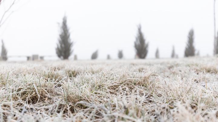 Экстренное предупреждение: в Ростовской области ожидаются заморозки