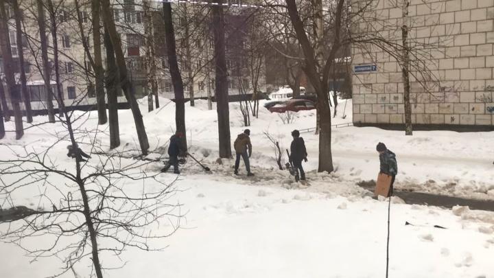 Хорошее воспитание или эксплуатация детей? В Перми школьники чистят тротуары от снега