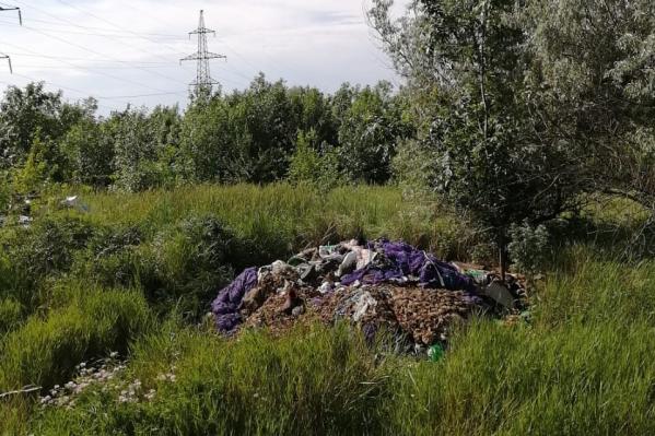 По словам местных жителей, площадь стихийного могильника уже 1000 квадратных метров
