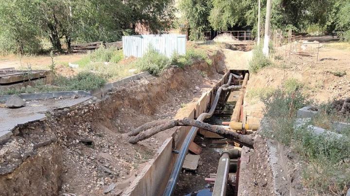 «Устроили нам концлагерь»: в забытых «Концессиями» траншеях в Волгограде успели прорасти деревья