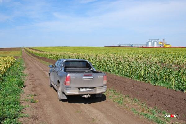 Мы поехали снимать репортаж о погибшем урожае, но впечатление от фермы перевесило мрачные мысли