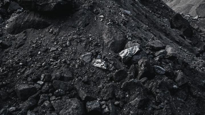 Кузбасские угольщики незаконно вырубили лес ради добычи угля. Им придется за это заплатить