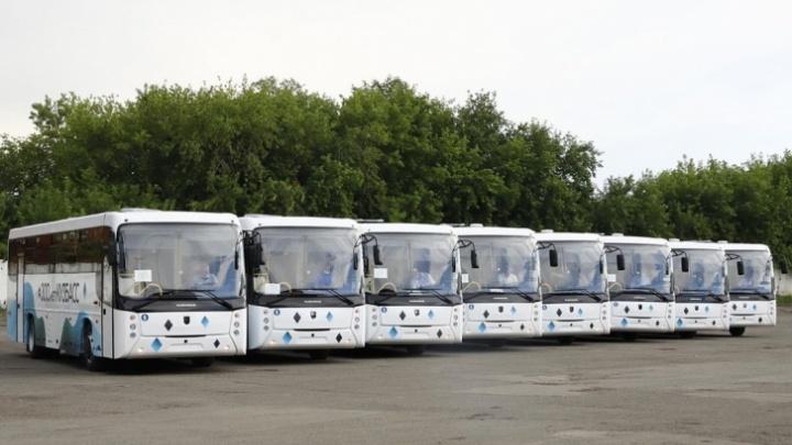 Питерский перевозчик рассказал, какие автобусы поступят в Новокузнецк