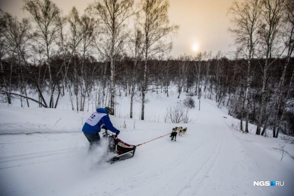 Прежде чем выдвигаться в пункт проката лыж, свяжитесь с администратором и уточните время работы пункта и наличие нужного вам лыжного снаряжения
