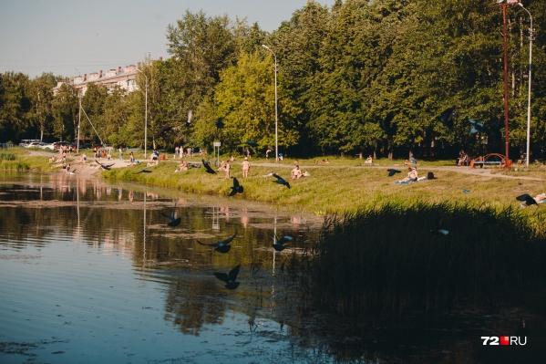 В этом году на всём Урале наблюдается нестабильная погода, и с весны временами наш регион настигает жара