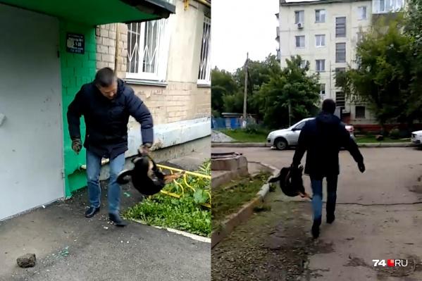 Мужчина расправился с животным посреди дня во дворе одной из многоэтажек в Курчатовском районе