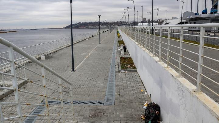 Нижегородцы требуют установить камеры на Волжской набережной, чтобы штрафовать вандалов и «свиней»