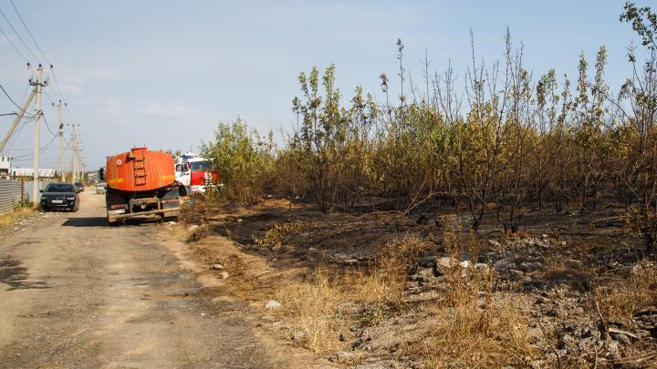 «Ветер гонит пламя в сторону дач»: под Волгоградом пытаются совладать со степным пожаром