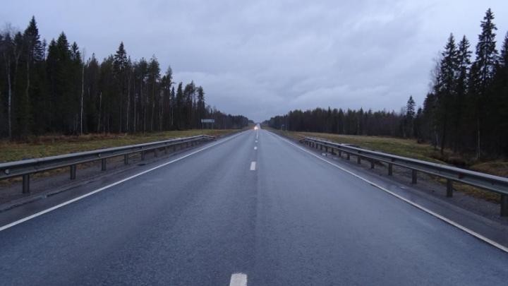 На трассе М-8 в Архангельской области грузовик сбил пешехода