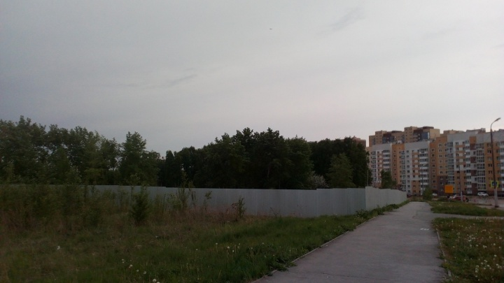 В Челябинске начали вырубать деревья под строительство трёх высоток и многоуровневой парковки