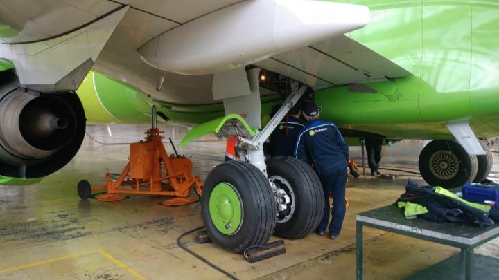 Сработал датчик: самолёт, вылетевший из Толмачёва в Москву, вернулся в Новосибирск