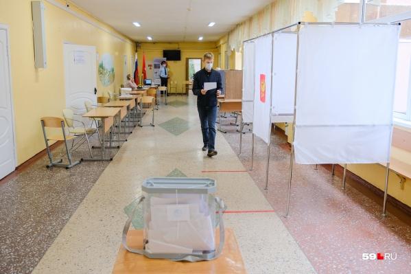 Выборы проводились в местное Земское собрание