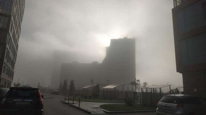 «Обалдеть, я вообще ничего не вижу»: густой утренний туман окутал Новосибирск