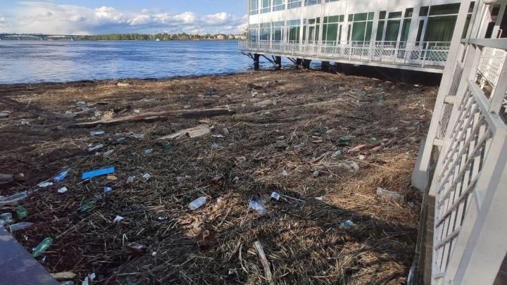 «Готовы вылавливать руками»: активисты требуют убрать груды мусора из Волги