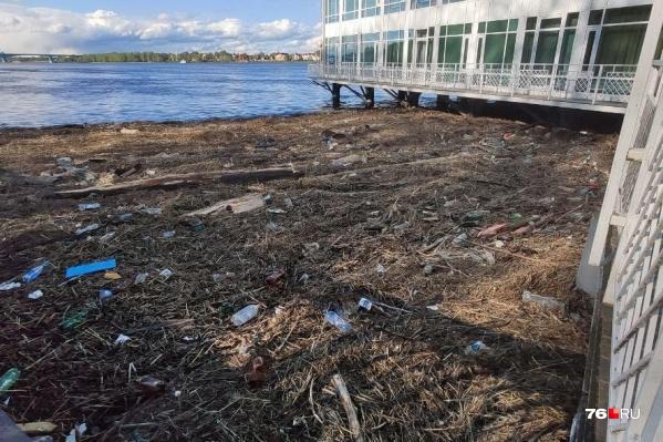 После подтопления мусор с берегов оказался в реке