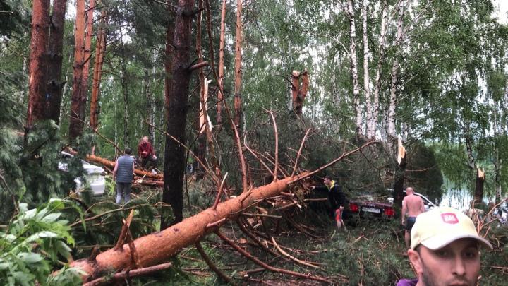 Деревья упали прямо на туристические палатки: смотрим последствия урагана в Нижегородской области