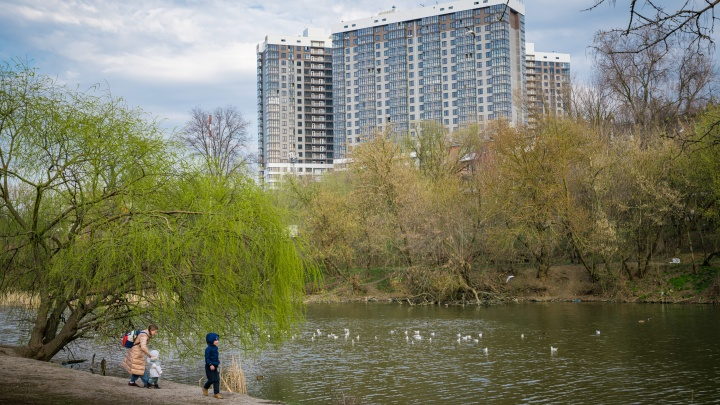 Ростовчане покупают квартиры рядом с экопарком по антикризисной скидке до 600 тысяч рублей