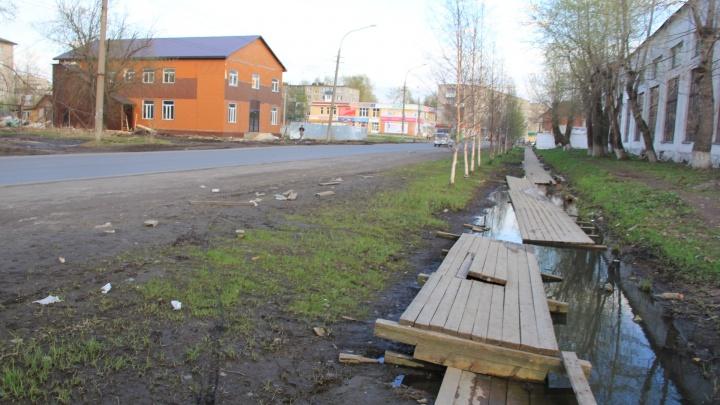 «Даже кусты подстричь не можете»: врио губернатора раскритиковал работу администрации Архангельска