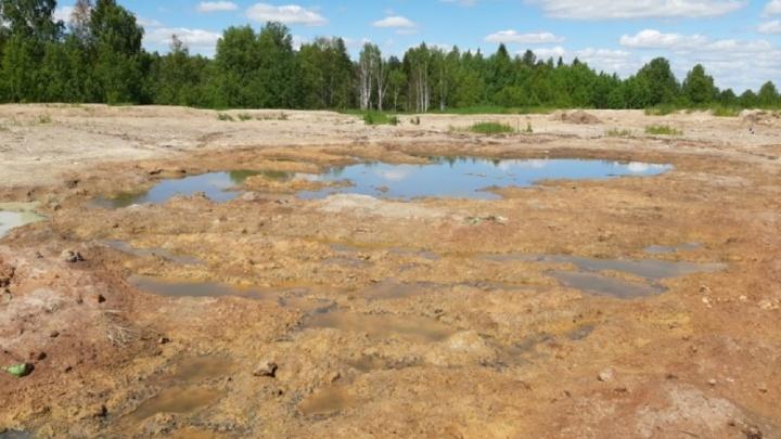 В Прикамье приостановили работу компании, загрязнявшей почву отходами
