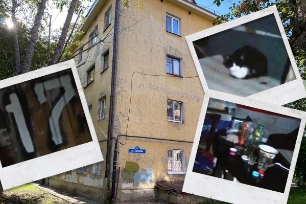 Тот самый дом, в подвале которого обнаружили несколько странных помещений