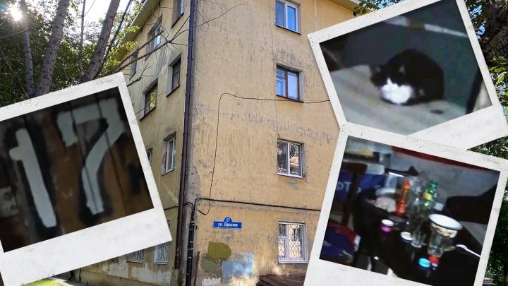 В подвале дома на Одесской тюменцы нашли помещения, похожие на квартиры. Разбираемся, что это