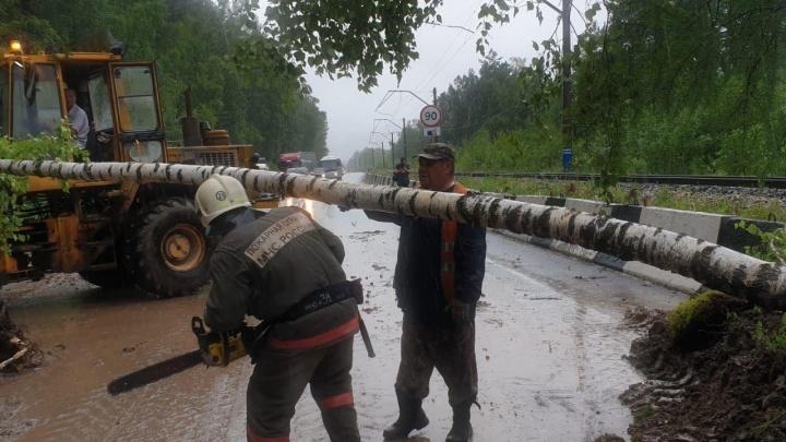 За оползень в Дивногорске наказали федеральных дорожников