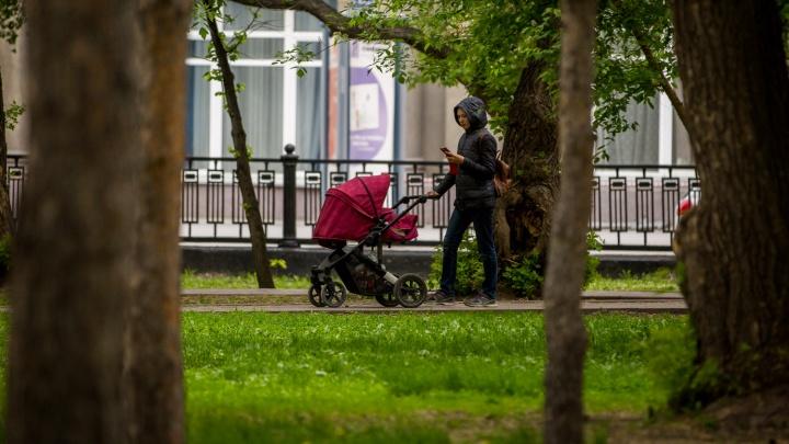 В ПФР рассказали, почему не всем кузбасским родителям выплатили по 10 000 на ребёнка