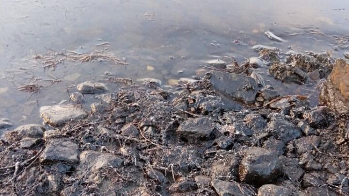В Ненецком автономном округе ввели режим ЧС из-за разлива нефтепродуктов