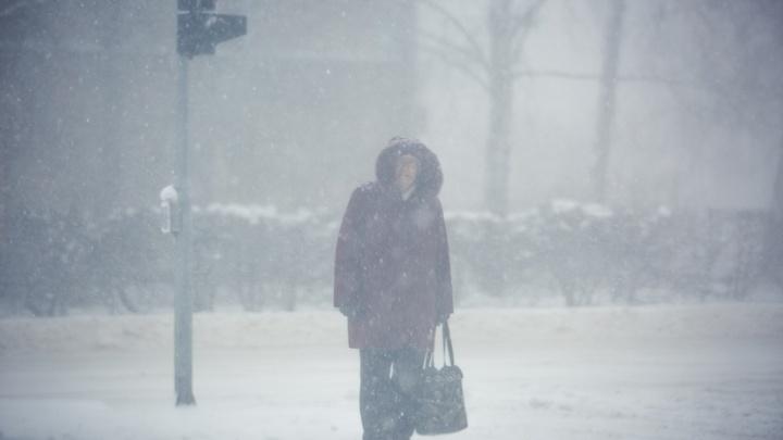 На Новосибирск идет сильный ветер: МЧС рассылает оповещения