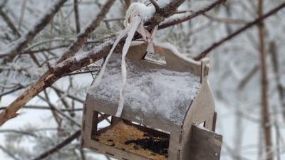 На новой рабочей неделе красноярцев ожидают заморозки и дождь со снегом