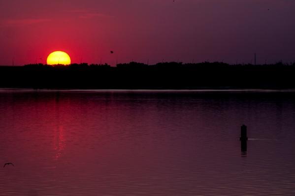 Первые лучи солнца окрашивают природу в багровые тона