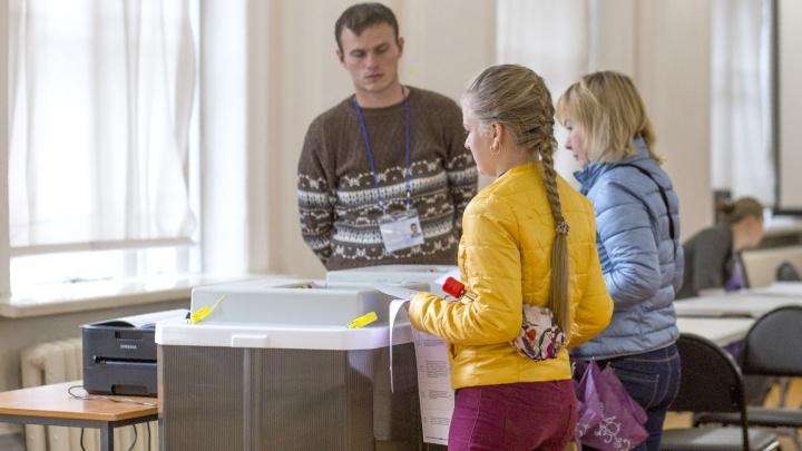 Следите за объявлениями в подъездах: как в Ярославле проголосовать за или против поправок в Конституцию