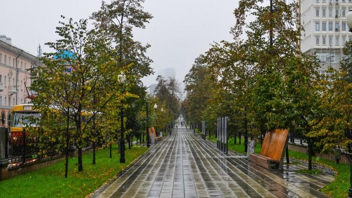 Бабье лето прошло? В Екатеринбург пришла серая и дождливая погода