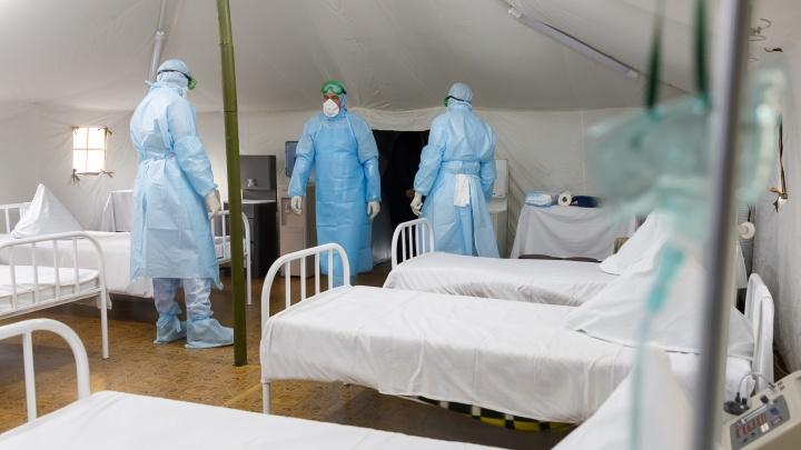 Страшный рекорд: в Волгограде за сутки коронавирус нашли у 124 новых заболевших