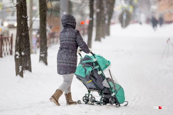 Ярославские родители смогут начать получать выплаты уже на следующей неделе