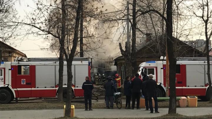 На Уралмаше при пожаре на конюшне заживо сгорели 12 лошадей